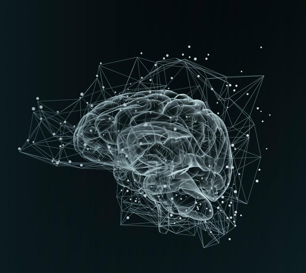 HeroShipAcademy – Erkenntnisse der modernen Hirnforschung und die Heldenreise als integral-erfahrungsorientierten Methode
